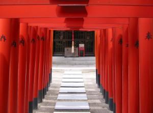 A Column of Torii at a Shrine in Fukuoka